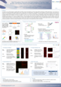 Poster: High Throughput Discovery and Optimization of Peptide Target Binders with Peptide Display and PEPperCHIP® Peptide Microarrays